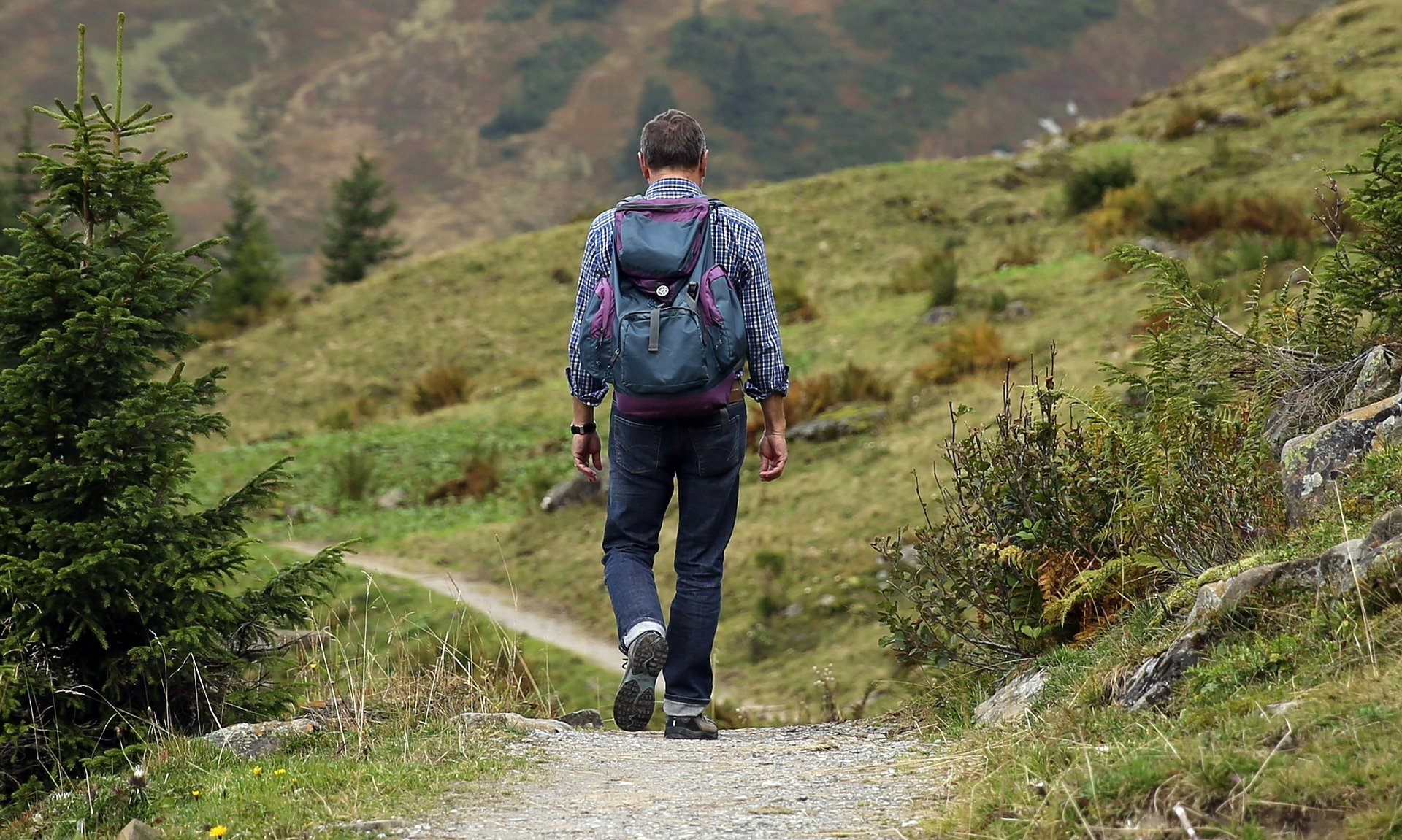 Man Wandering in nature with backpack